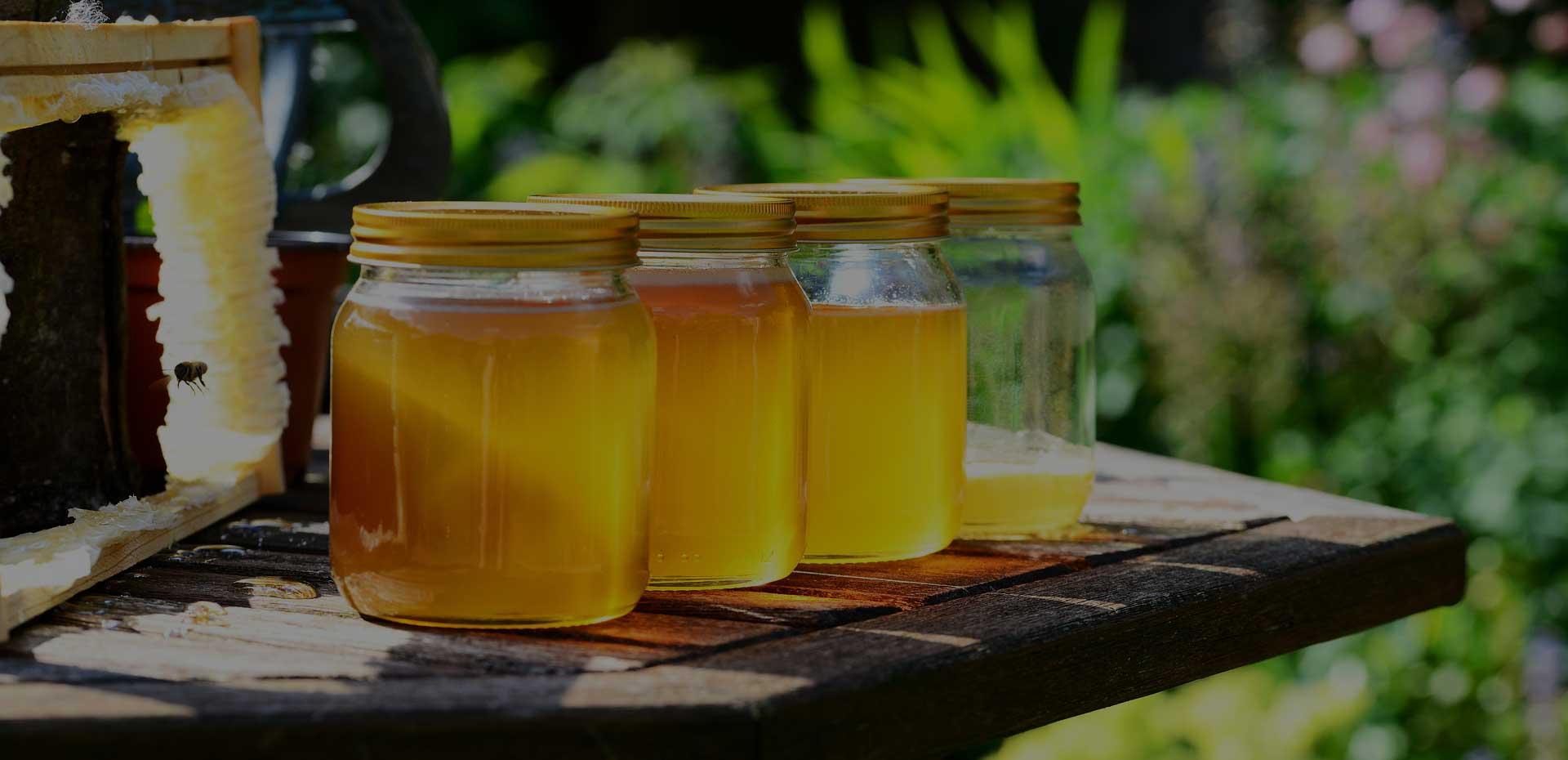 Des pots de miel et un cadre